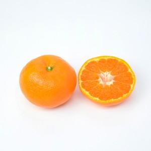 中生_カット小550