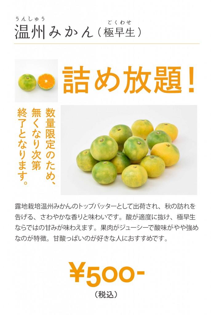 銀座店_詰め放題イベントPOP
